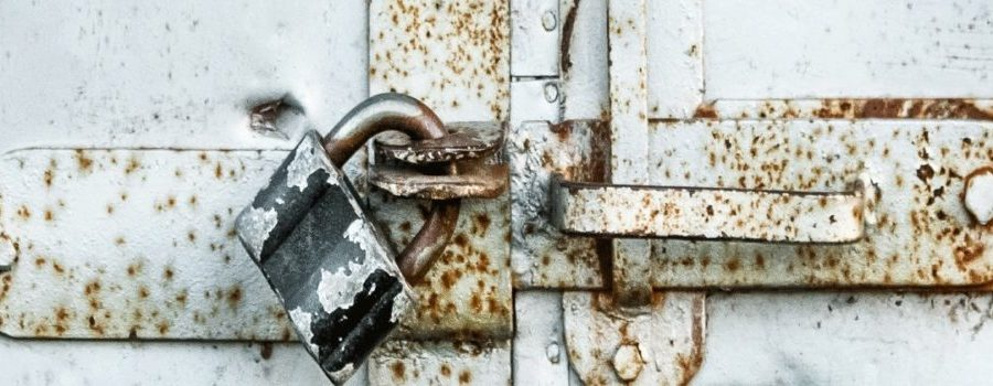 Lockdown, Partial Lockdown or No Lockdown — and the Impact on Equity Markets
