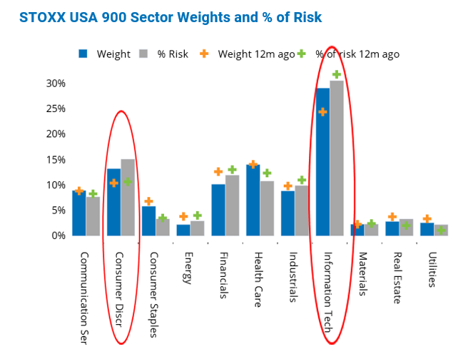 STOXX USA 900 Sector Weights and Percentage of Risk